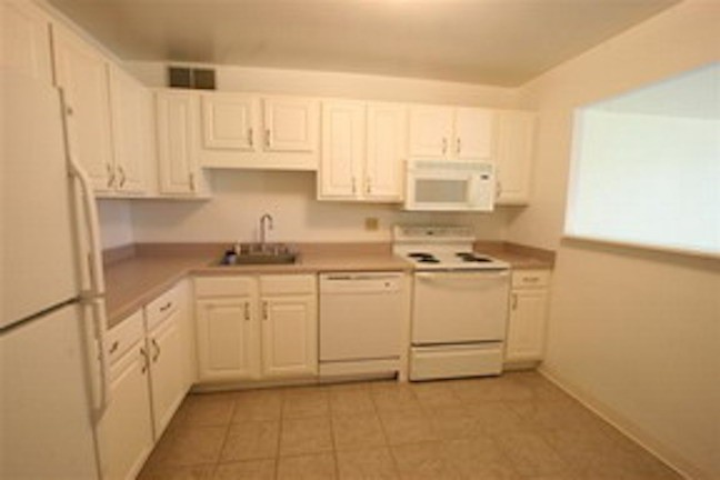 211 East Ohio Street 1722 Chicago Il 60611 1 Bedroom Apartment For Rent Padmapper