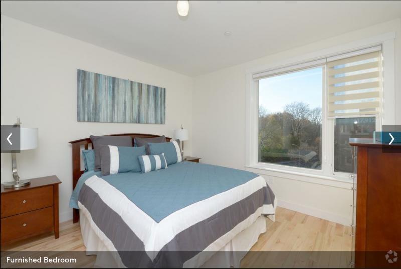 Griswold St Cambridge Ma 02138 2 Bedroom Apartment For Rent Padmapper