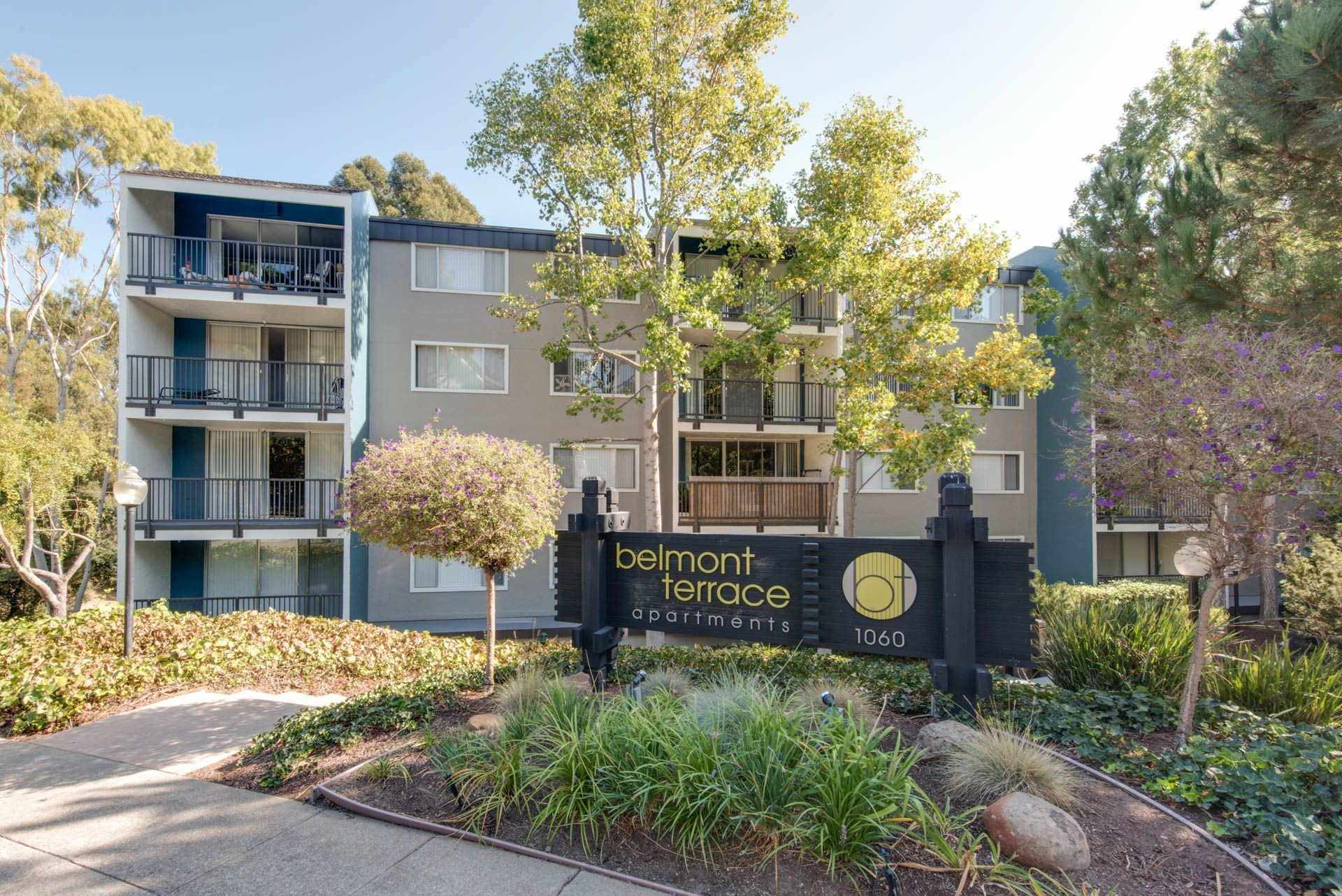 Belmont Terrace Apartments
