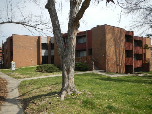 1503 Anthony St Columbia Mo 65201 1 Bedroom Apartment For Rent For 555 Month Zumper