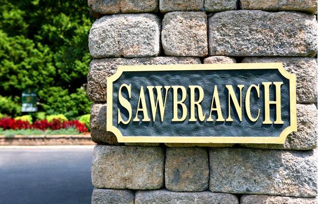 Sawbranch